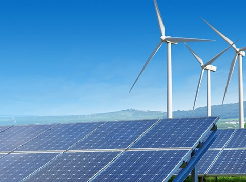 From Enterprise Vision to a Sustainable Growth Story - Lessons from Four Renewable Energy Companies banner